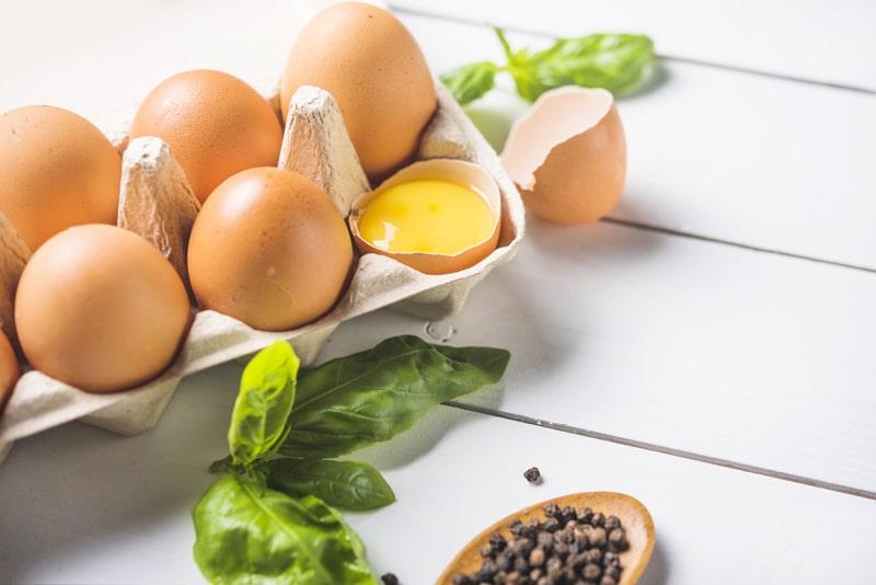Plantar semillas en un huevo Manualidades para cuidar el medioambiente