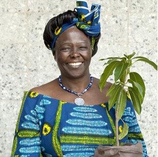 Wangari primara mujer africana en conseguir el Premio Nobel de la Paz.