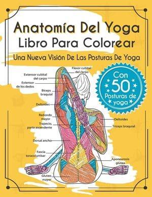 Anatomía del yoga: libro para colorear