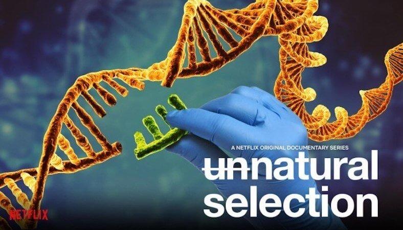 Series ciencia Netflix