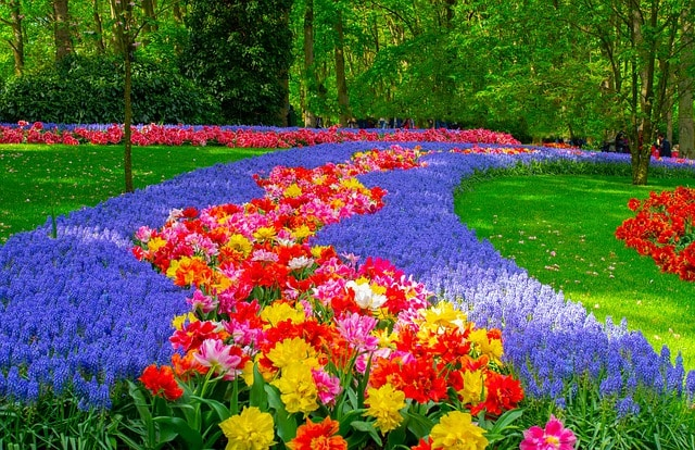 Los jardines de Keukenhof (Holanda) jardines virtuales