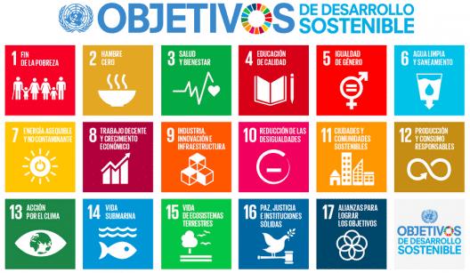 ONU desarrollo sostenible
