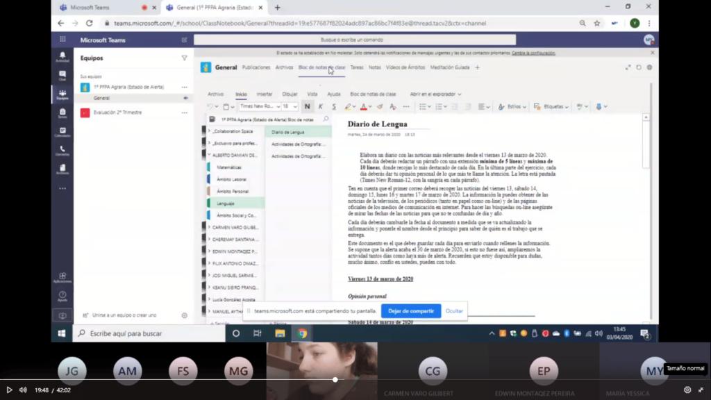 Microsoft Teams estudiantes NEE DIARIO