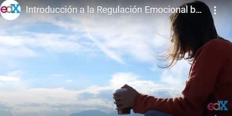 Introducción a la Regulación Emocional basada en Mindfulness