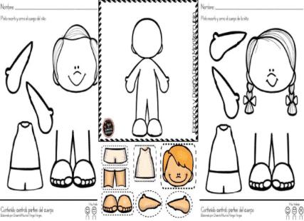 cuaderno cuerpo humano
