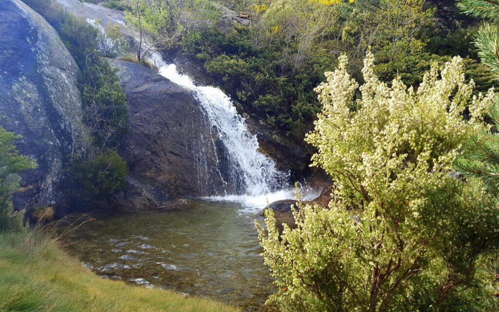 Chorro Grande en la Granja de San Ildefonso