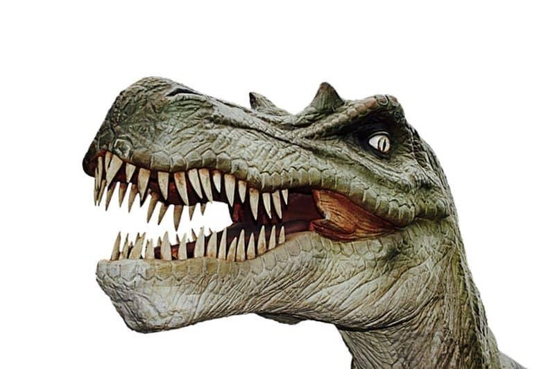 Andar entre dinosaurios