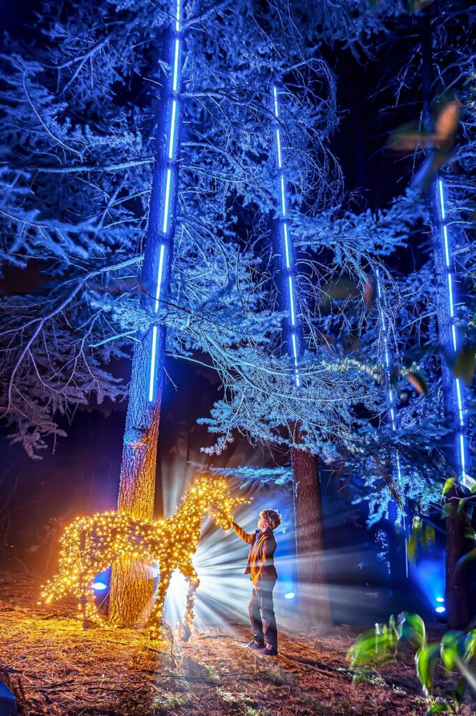 actividades al aire libre Navidad Naturaleza Encendida