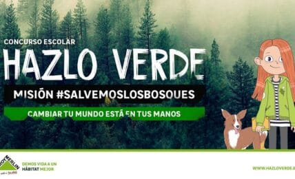 Concurso escolar Hazlo Verde de Leroy Merlín