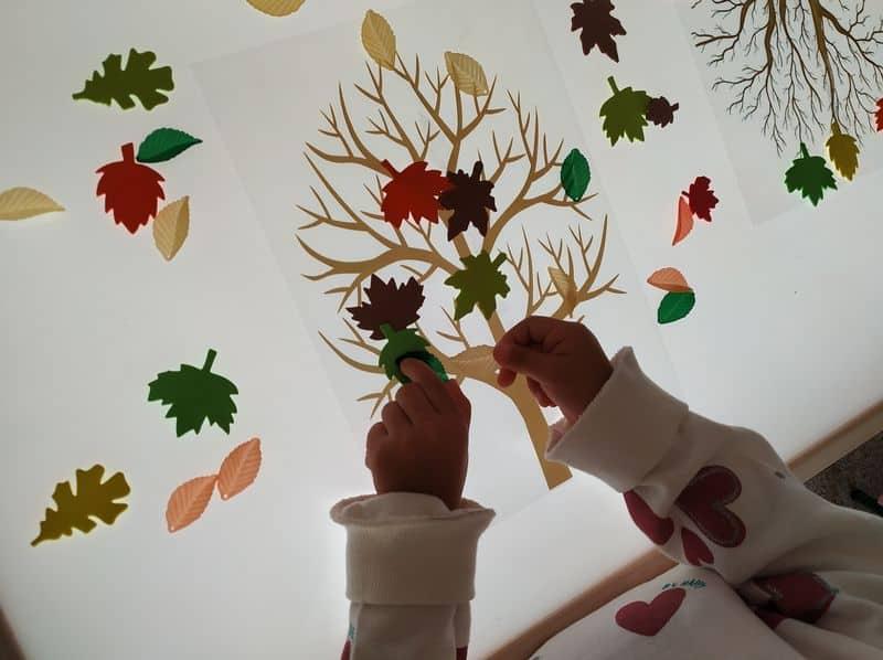 Una niña coloca unas hojas en la mesa de luz para hacer un árbol