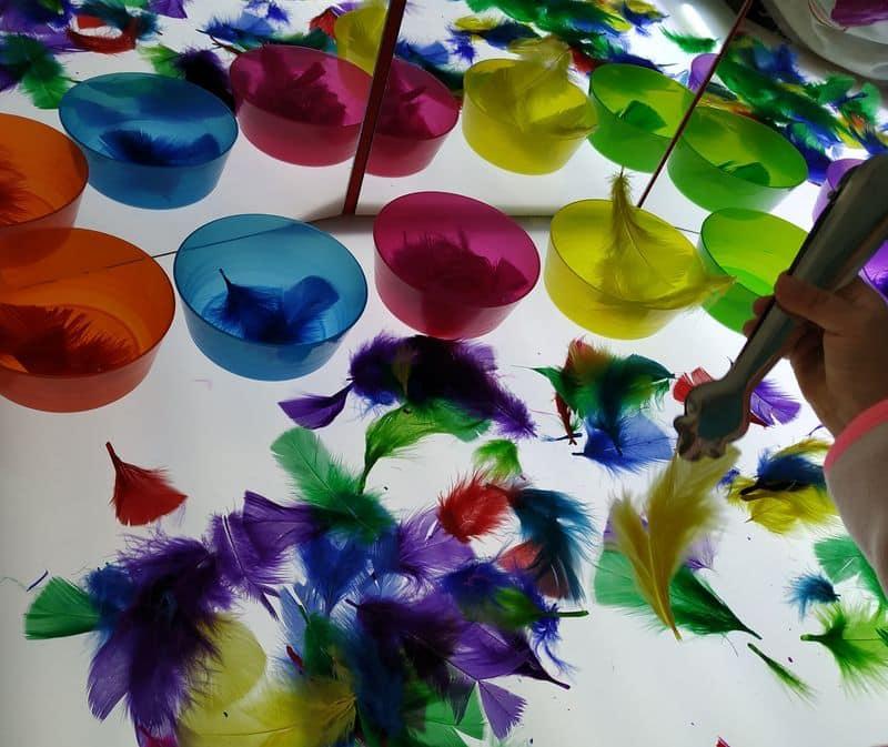 Plumas de colores y una pinza para cogerlas