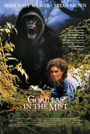 Gorilas en la niebla