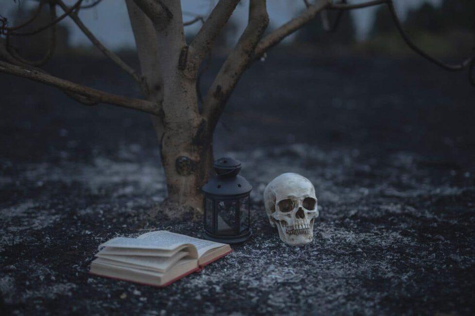 novelas de miedo y terror