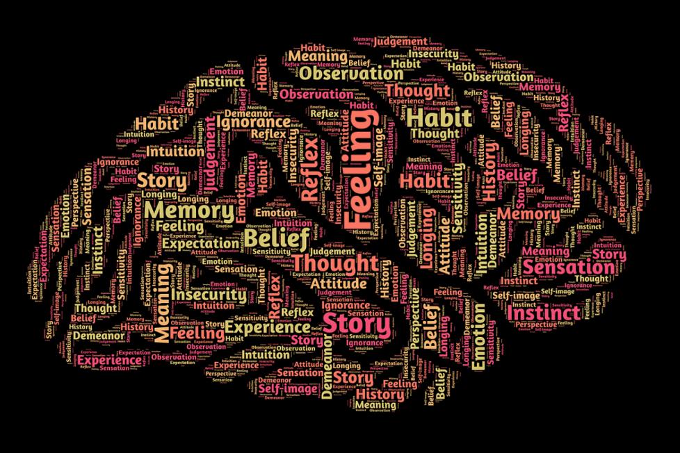 aprendizaje práctico y multisensorial