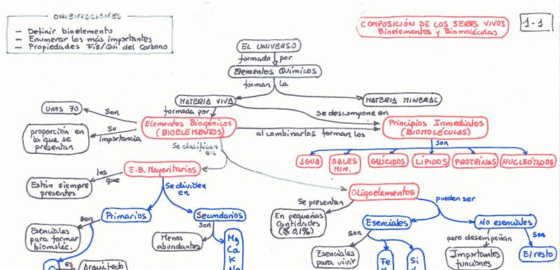 mapa conceptual Juan Ortíz