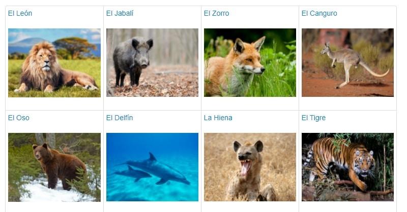 Estudiantes info animales