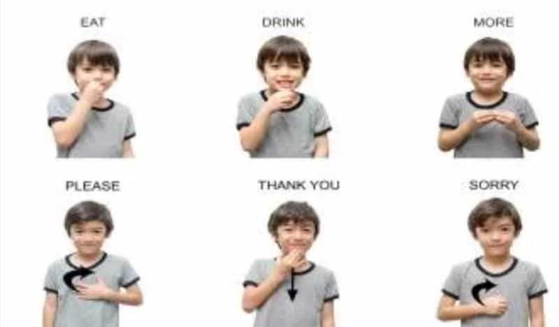 Euroinnova lengua signos
