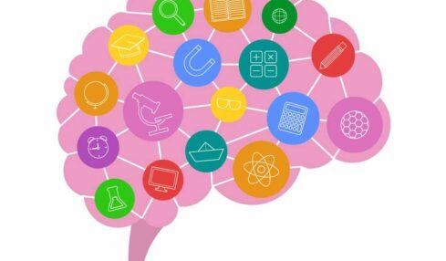 libros neuroeducación